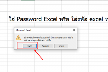 ใส่ Password Excel หรือ ใส่รหัส excel
